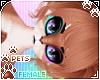 [Pets] Cinda | Rekina
