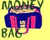 [] MONEY BAG