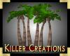 (Y71) Jungle Palms