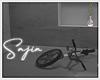 Ⓢ Bike