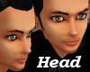 KM Brad head