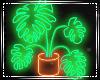 GB | Neon Tropical
