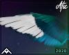 Poe | Wings
