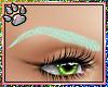 Mint Eyebrows