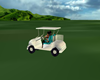 UXI]CART/CART2 GOLF 4pos