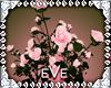[eVe]PinkFlowers