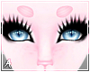 A| Pink Momo Brows (F)
