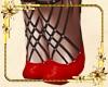 CZ/  Shoes