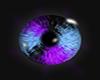 purple and blue eye