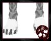 Snow Leopard Feet