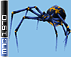 Blue Shoulder Spider