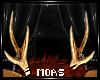 ~Moose Antlers~