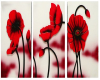 Red Poppies Wall Art
