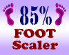 Resizer 85% Foot