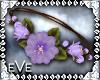 [eVe]SpringSprungNeck-Pr