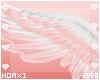 H! Sallow Wings