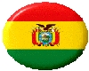 bolivian flag button