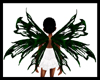 Green Black Party Wings