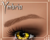 Ombre Eyebrows 02