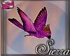 ;) Island Bird Purple