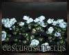 ~OA~ [HC] WallTop Roses
