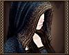 [Ry] PM Hood blue