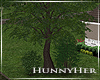 H. Willow Home Tree V1