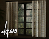 Whispers Window
