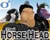 Horse Head -Male