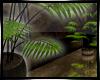 [D] TR Reflect Plant
