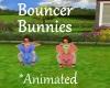 [BD]BouncerBunny
