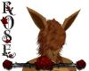 {Rose}Eevee's ears