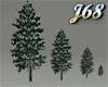 J68 Pine Tree Snowy