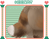 [H!]Mocha-Macho tail 3