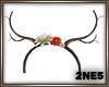 [2NE5]Reindeer 03