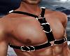 Black Harness Top