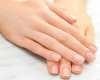 Small Female Hands