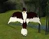 Hawk Beak M