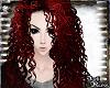 Dark| Reddish Jacinda