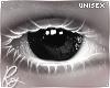 Black Eyes Reg. Rqst