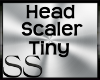 *SS Head Scaler Tiny