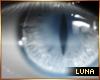 *L Nora's Eyes ♂♀