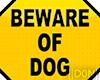 DOG pee actions + vb