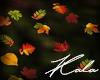 !A autumn leaves