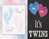 ~G~ Baby Gender Reveal T