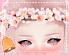 🔔 Sakura Crown 2