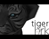 Tiger G/B