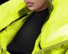 Yellow -Jacket