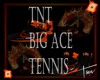 ~TNT~ Big Ace Tennis
