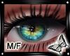 !! Wonderlust Eyes